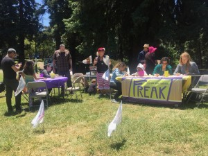 Freaks making flags at Figment Oakland, June 2017